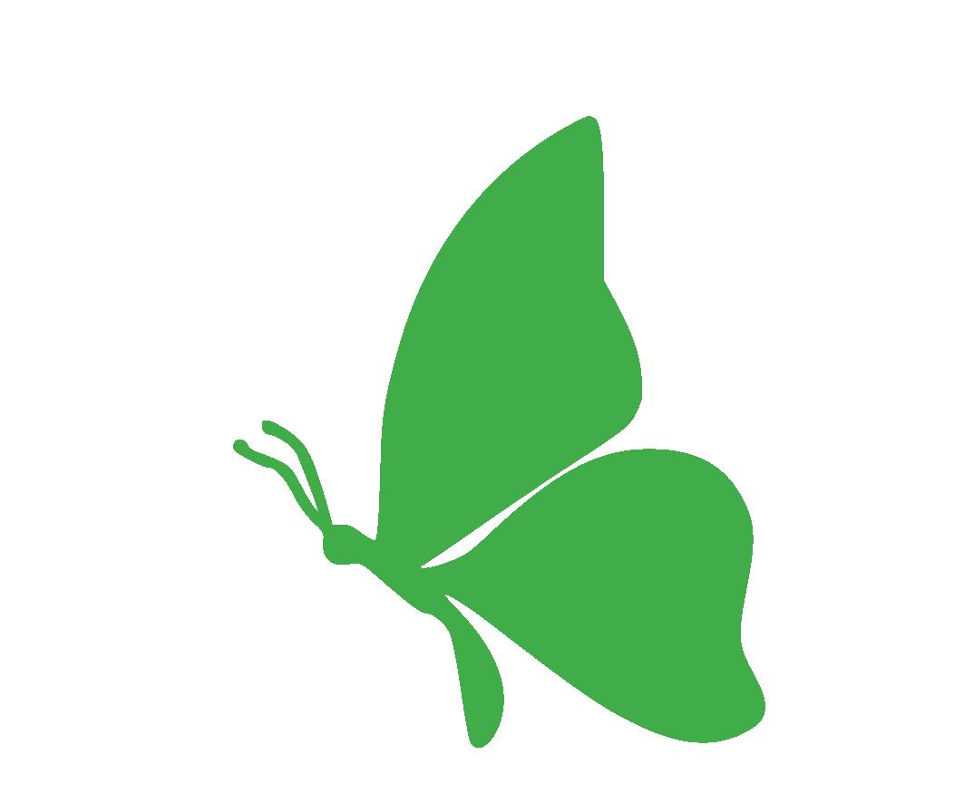 Charakter Schmetterling - Entscheidungsfreudig